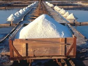 45 la raccolta del sale