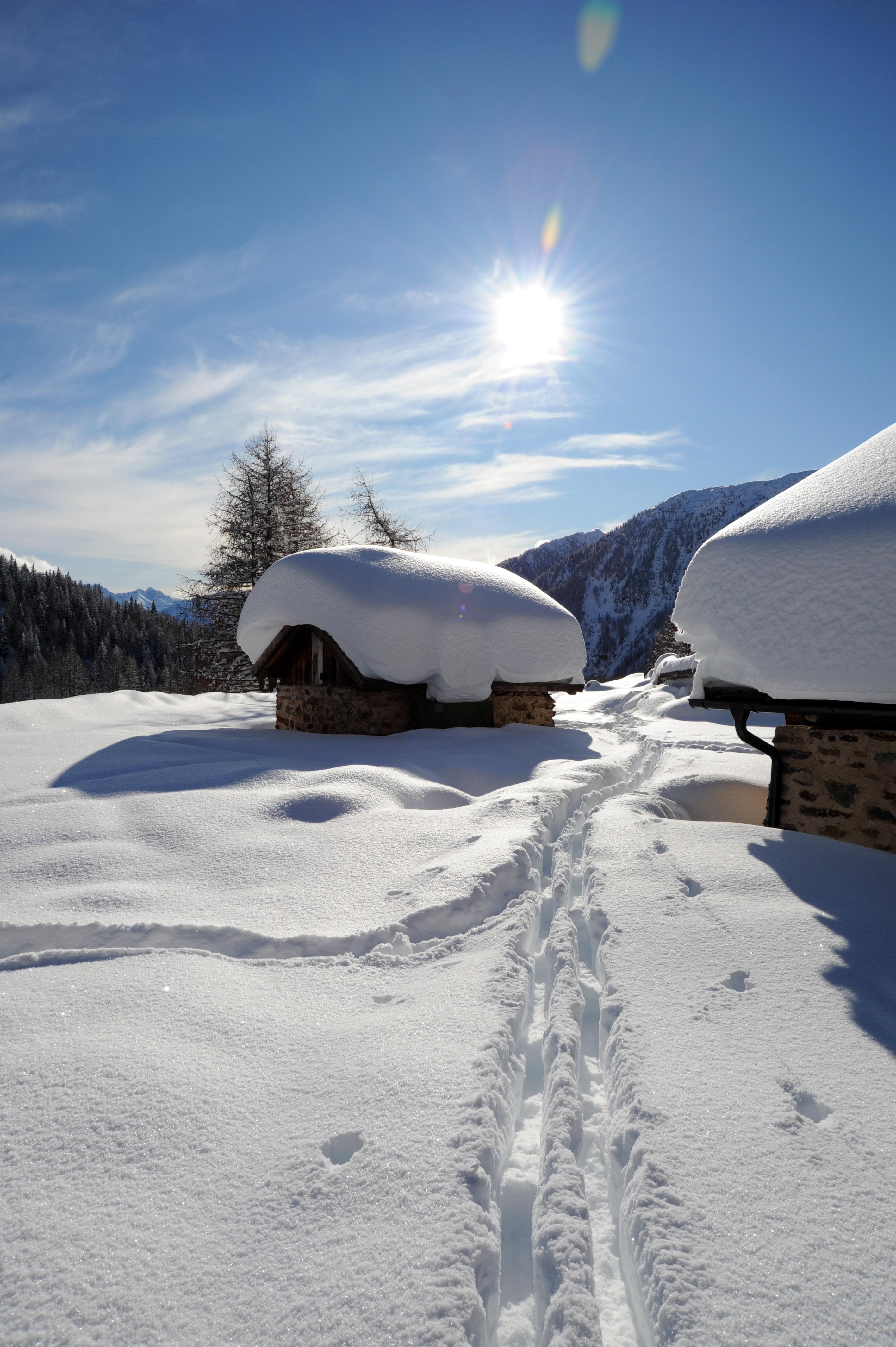Foto della Val di Pejo in inverno, selezione migliori immagine della Val di Pejo, piste di sci, masi, sports, animali, contadini, attività turistiche. Winter sports in Pejo.Winter images of Val di Pejo